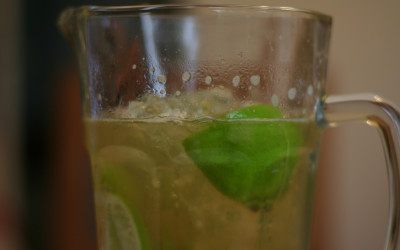 Peggy Filippone Ginger Ale Recipe