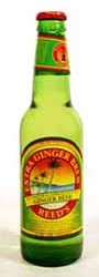 Reed's Extra Ginger Jamaican Brew Review